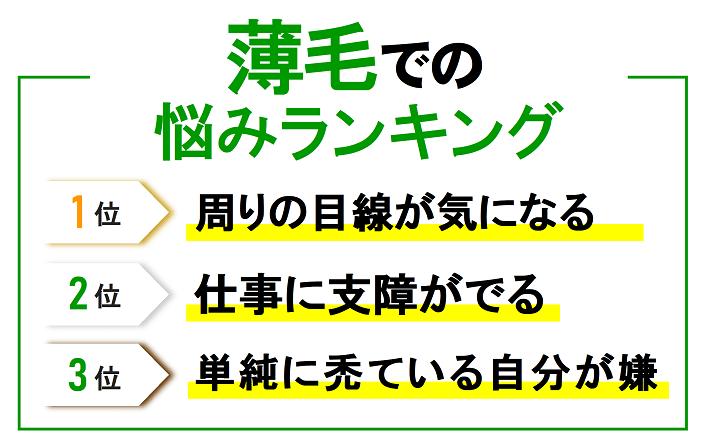 """""""薄毛の悩みランキング/"""